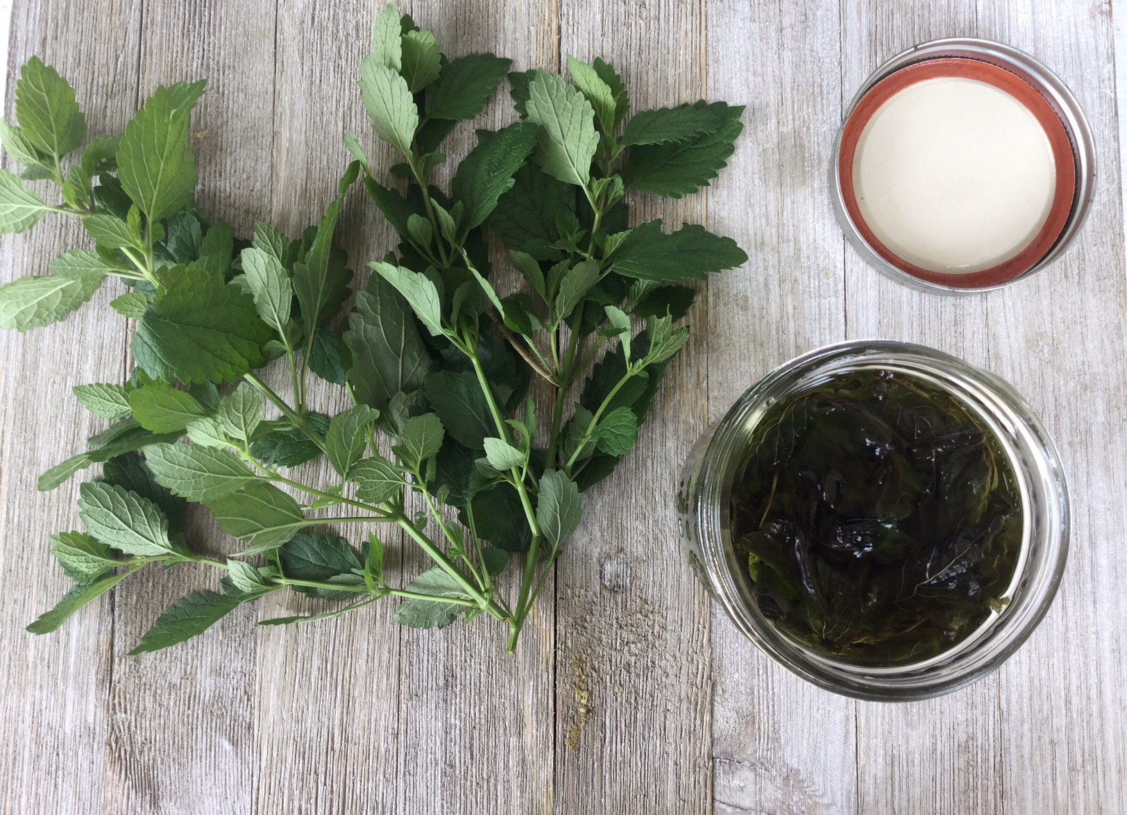 Image result for Herbs that fight stress and tension