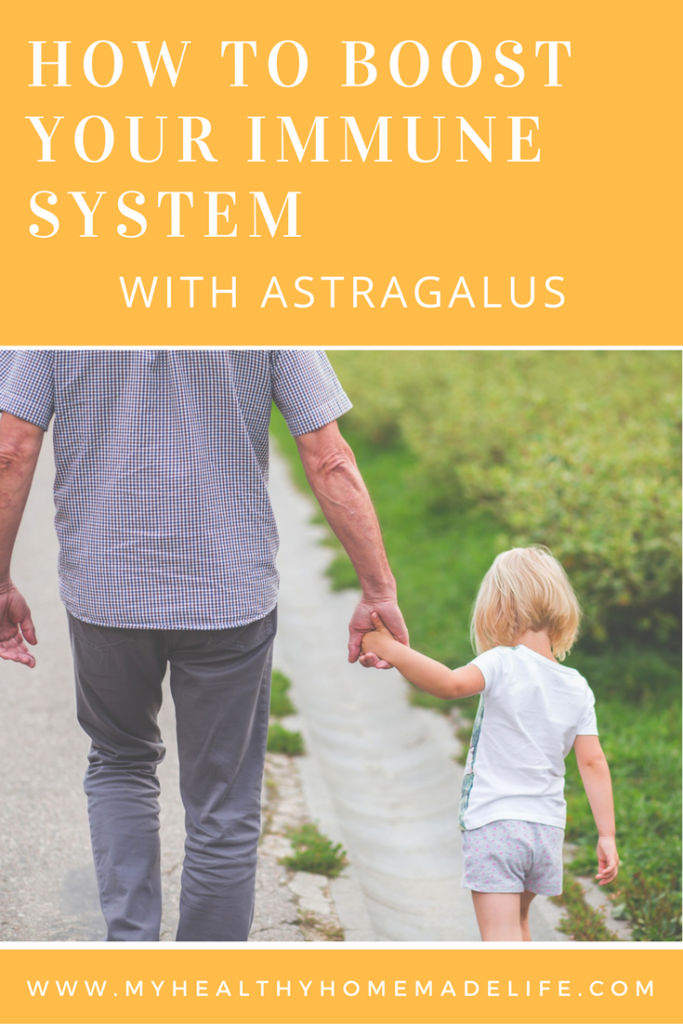 How to Boost Your Immunity with Astragalus | Herbal Remdies | Home Remedies | Immunity | Health | Herbs | My Healthy Homemade Life