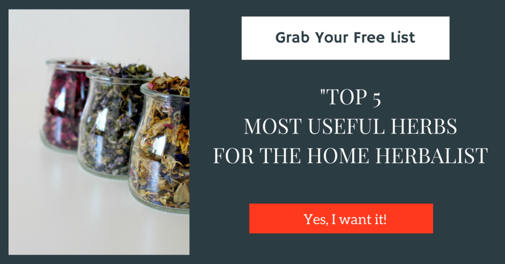 Grab Your Free List, Top 5 Most Useful Herbs for the Home Herbalist